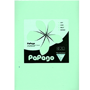 A4 Pastel Green Card 240gsm Ream of 100 Sheets