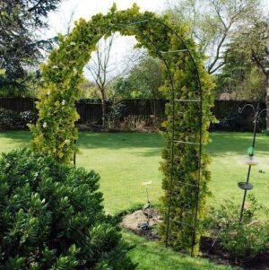 Metal Garden Trellis Arch