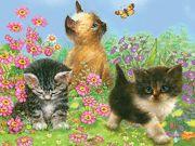 Three Kittens Pencil By Numbers Art Kit A4