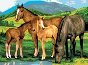 A3 Painting By Numbers Kit - Horses And Foals Pjl13