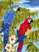 A4 Painting By Numbers Kit - Parrots Pjs35