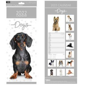 2022 Dogs Calendar