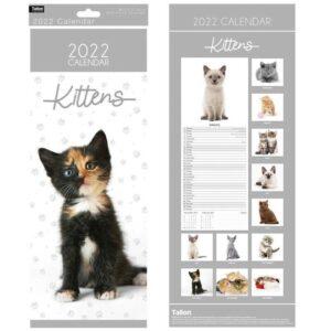 2022 Kittens Calendar