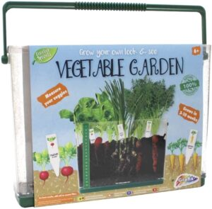 Grow Your Own Look & See Vegetable Garden